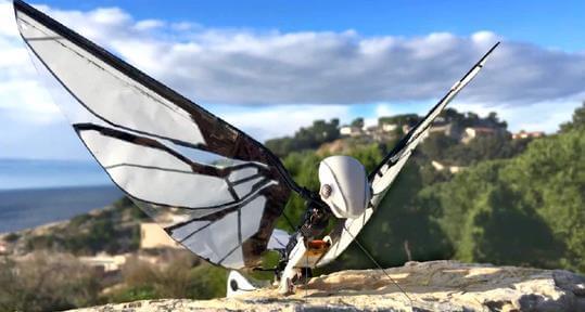 鳥のように空を飛ぶドローンMetaFly